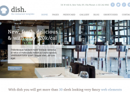 Dish WordPress Theme